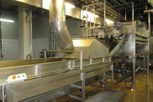 工場での選別と洗浄